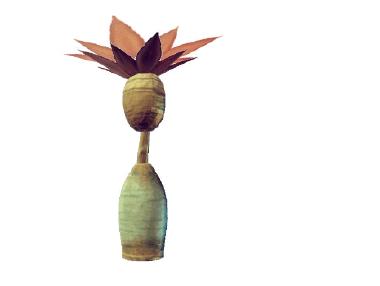 Plant ivolae siroseireum.png