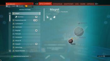 Magnit