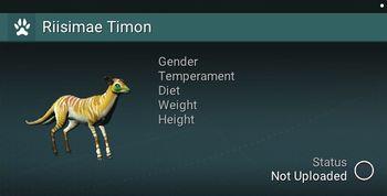 Riisimae Timon