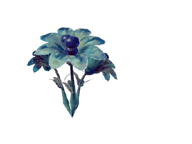 Plant nealbseus almichoeneus.png