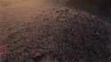 New Lennon Ferrite Dust.jpg