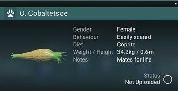 O. Cobaltetsoe