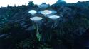 Lodret IV Aquatic Flora 1.png