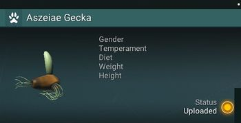 Aszeiae Gecka