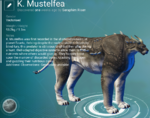 K. Mustelfea