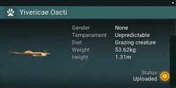 Yivericae Oacti - None.jpg
