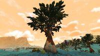 Naisha Tree.jpg