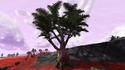 Lodret IV Terrestrial Flora 9.png