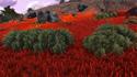 Lodret IV Terrestrial Flora 6.png