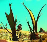Tartarus Tree.jpg