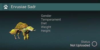 Ervusiae Sadr