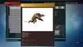 Hiwi fauna 7.jpg
