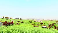 Ubilimo Plains.png
