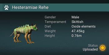 Hesteramiae Rehe