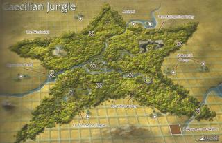Caecilian jungle.png