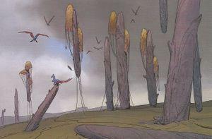 Stone trees.jpg