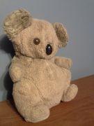 Koala Front.jpg