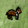 Collie Puppy.png