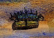 Harvested Tule.jpg