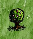 Wild Gooseberry Bush.jpg