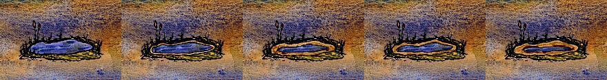 States Pond.png
