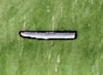 Steel Blade.jpg