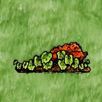 Ripe Squash Plant.jpg