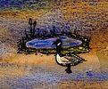 Canada Goose Pond