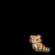 Raccoon 00 00.png