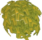 Waxy Foliage