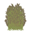 Plant rye 3.png