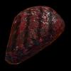 Grilled Alien Meat