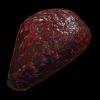 Alien Meat
