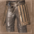 Armorcaststeepant2.png
