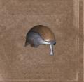 Armorcaststeelhelmet.png