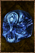 Blue skull effigy.png