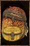 Scaled Satchel.png