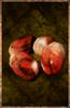 Crabeye Seed.png