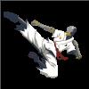 Spray Zenyatta Taekwondo.png