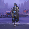 Ana VP Protector.png