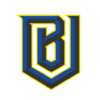 Spray Boston Uprising Logo.png