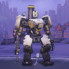 Bastion Skin Defense Matrix.png