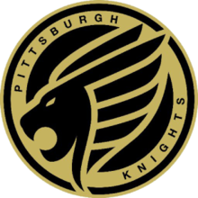 Pittsburghlogo profile.png