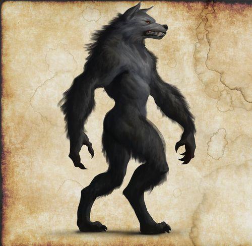 Nightwolf-sm.jpg