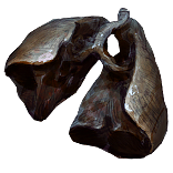 Malachai's Lungs inventory icon.png