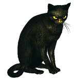 Black Cat Pet inventory icon.png