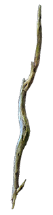 Gnarled Branch inventory icon.png