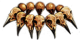 Headhunter race season 7 inventory icon.png
