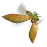 Huntsman Wings inventory icon.png