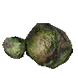 Forest Rock inventory icon.png